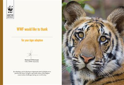 Tiger Adoption Certificate