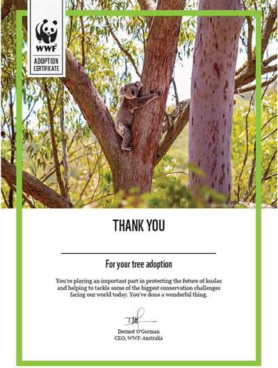 Tree adoption certificate